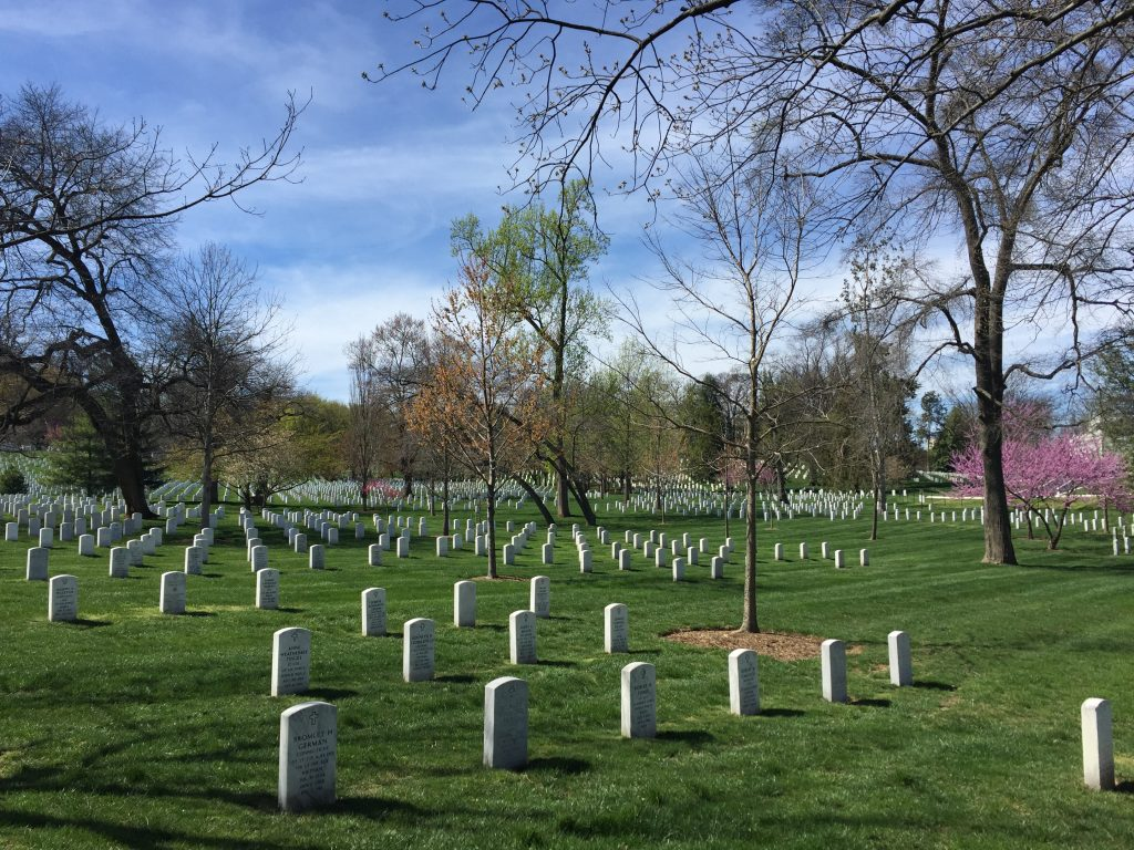Washington DC durante el cherry blossom